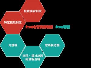 2つの在留資格制度×3つの職種に特化した、 日本アジア医療福祉協同組合のトータルサポート。