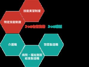 2つの在留資格×3つの職種に特化した、 日本アジア医療福祉グループのトータルサポート。