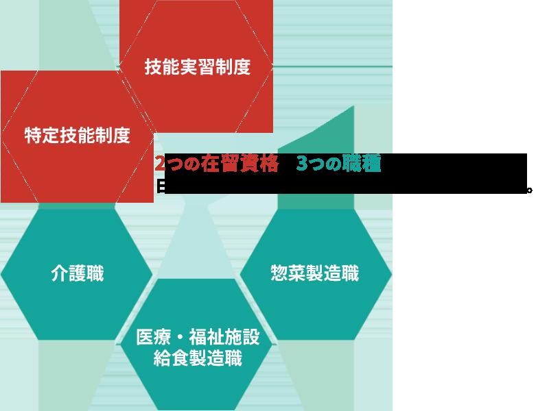 2つの在留資格×3つの職種に特化した、日本アジア医療福祉グループのトータルサポート。