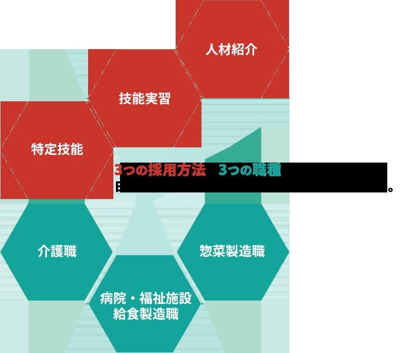 3つの在留資格×3つの職種に特化した、日本アジア医療福祉グループのトータルサポート。
